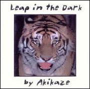 leap in the dark_180.jpg